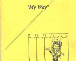 my_way-stor